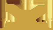 logotransvippl